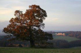 Visit Yorkshire to see wonderful landscapes at Harewood