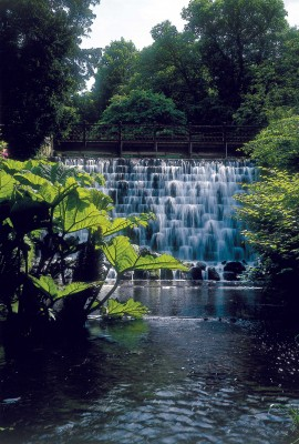 Enjoy the sound of water at the waterfall in the gardens