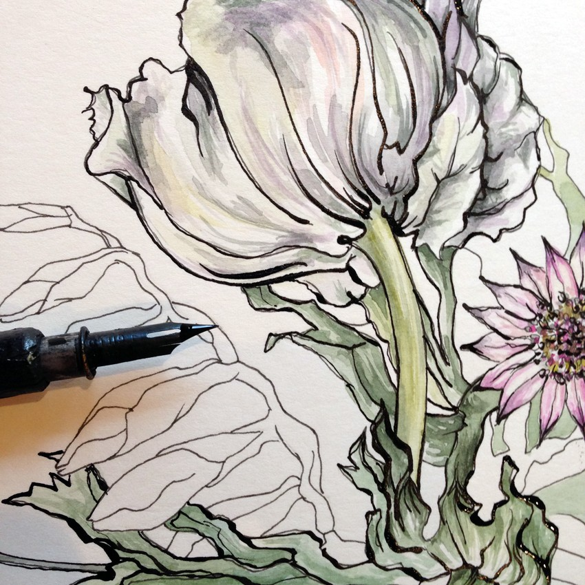 Botanical Drawing inspired by Porcelain at Harewood House, Yorkshire