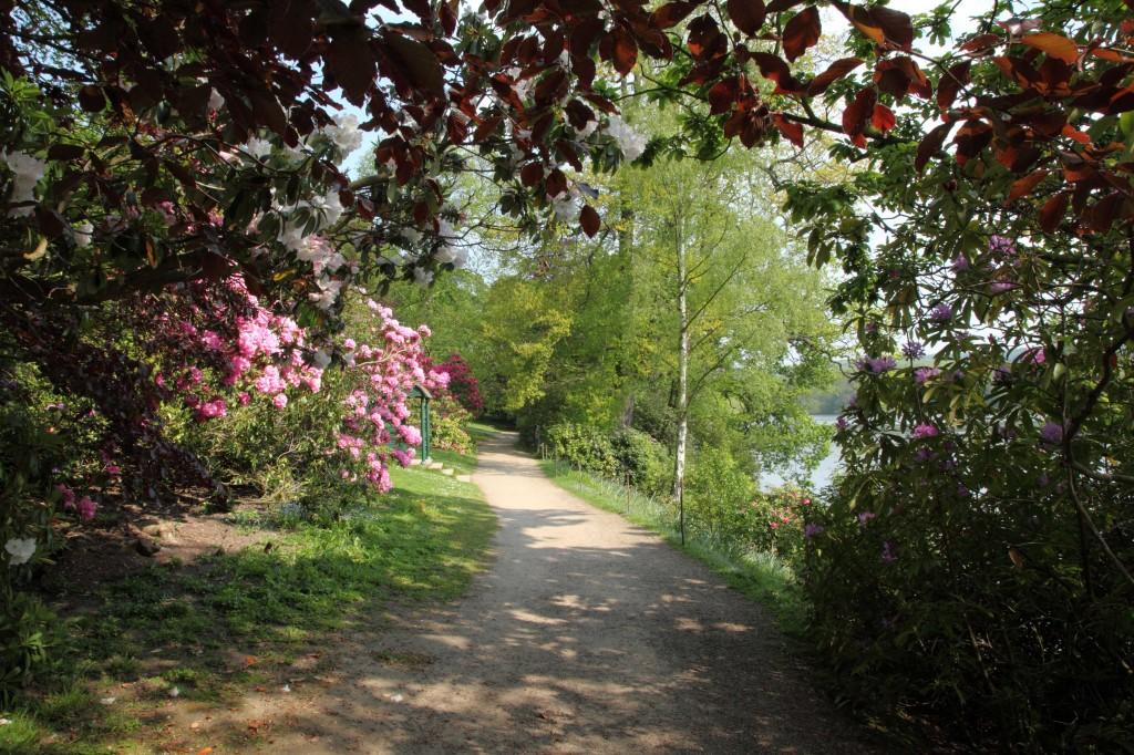 Gardeners love the Lakeside Garden at Harewood