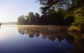 A haven for wildlife, the lake at Harewood House