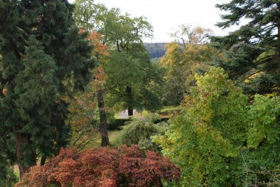 Explore the West Garden at Harewood House