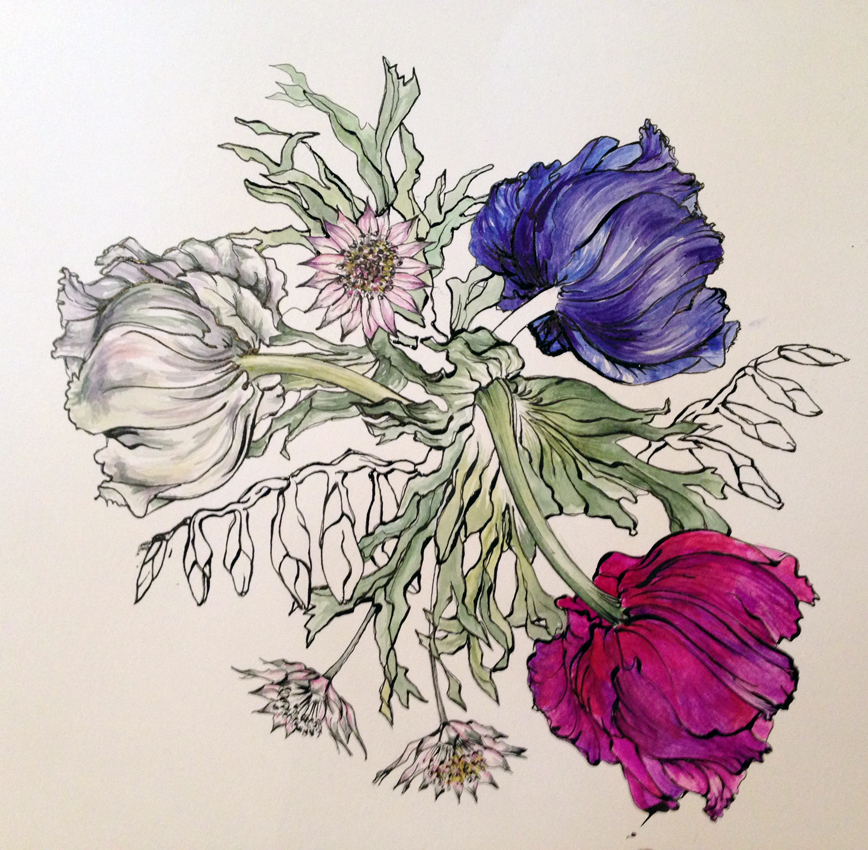 Botanical Drawing Workshop at Harewood House in Yorkshire