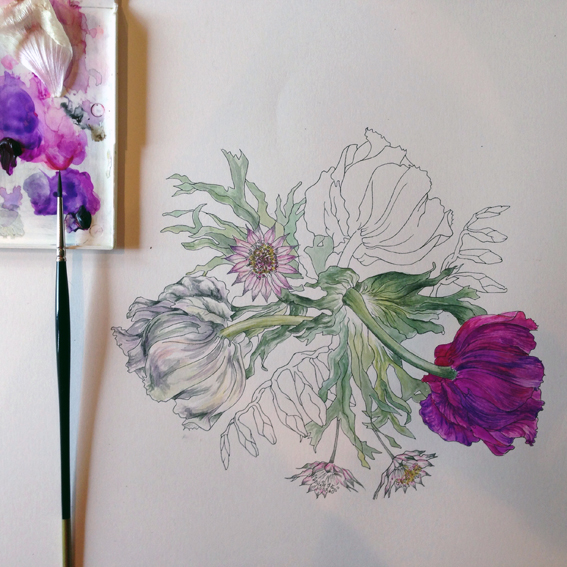 Sèvres Inspired Botanical Drawing workshop at Harewood House, Yorkshire