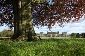 Discover Harewood House