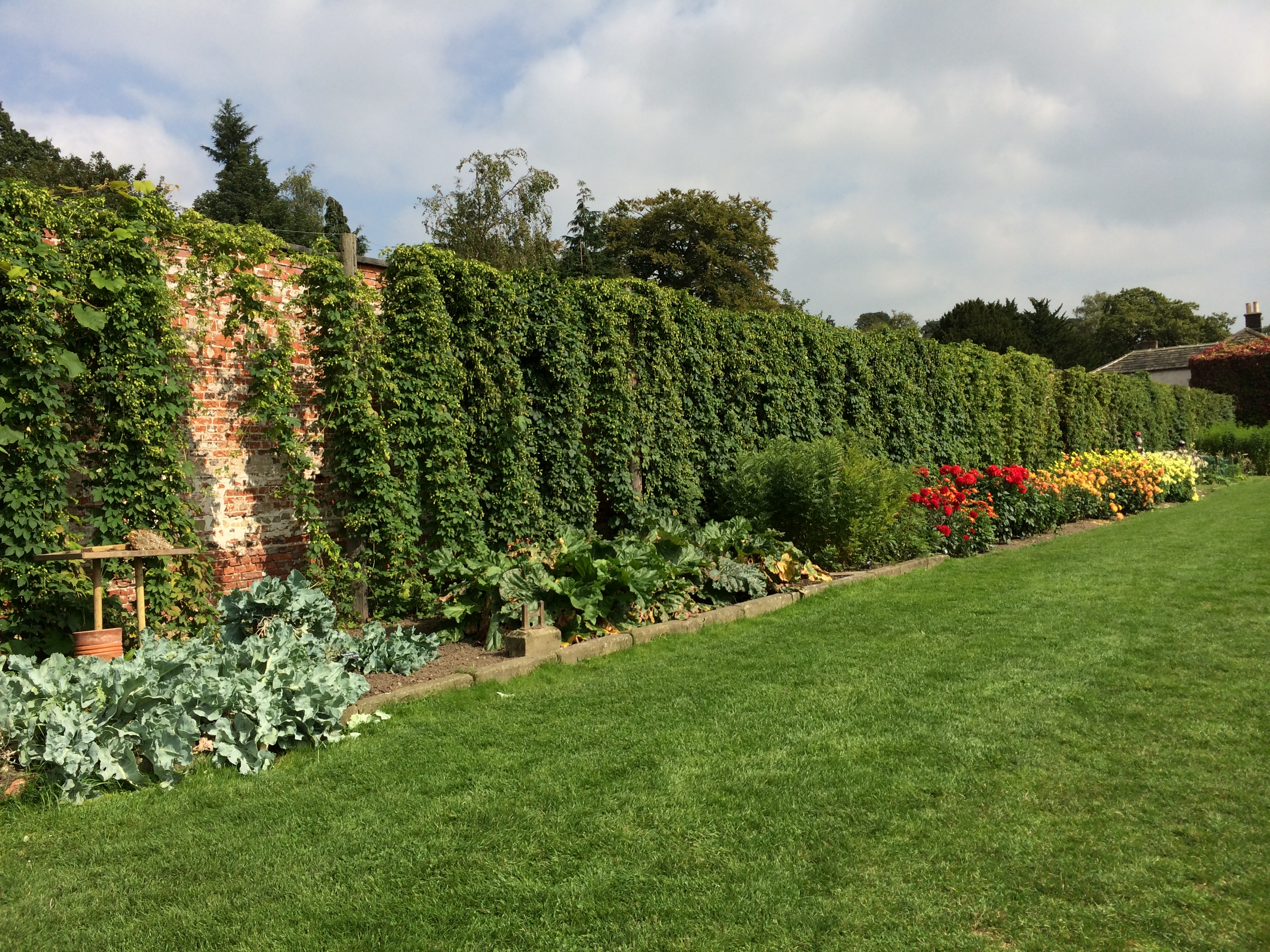 Harewood House has an popular walled garden