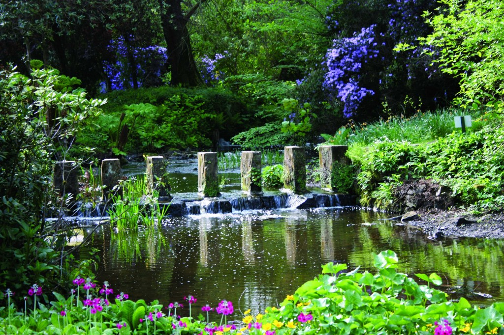 A place to enjoy all year round. The Himalayan Garden at Harewood