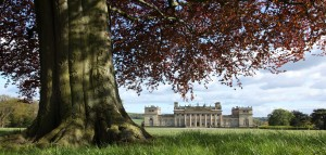Harewood House from the North