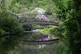 Award winning gardens at Harewood House in Yorkshire