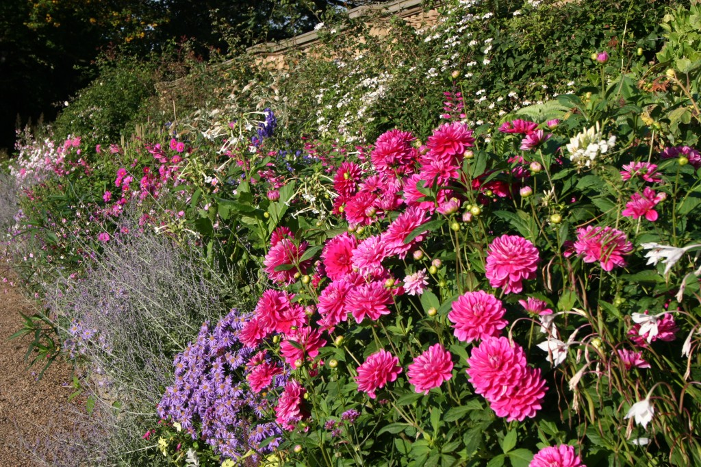 October plant borders at Harewood House in Yorkshire
