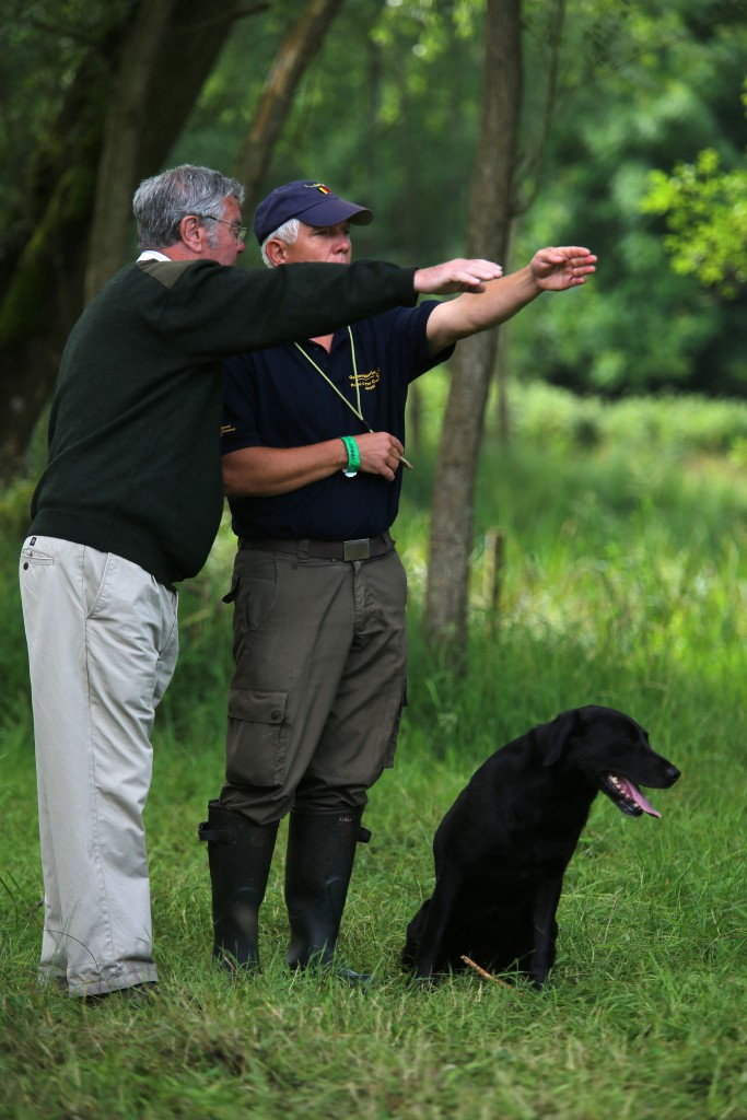 Harewood House in Yorkshire will host the CLA Game Fair and Gundog displays