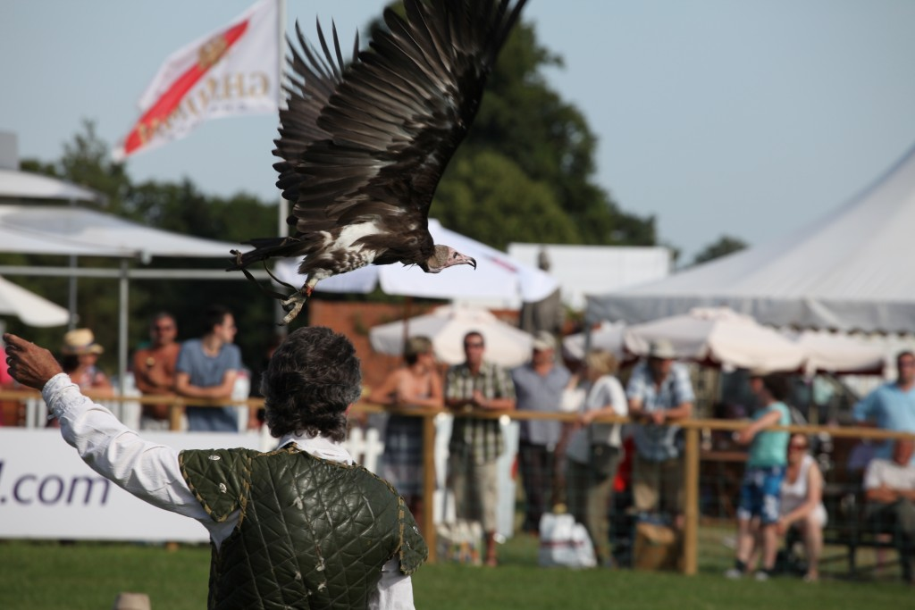 Harewood House in Yorkshire will have a falconry display