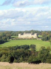 Capability Brown landscape at Harewood in Yorkshire