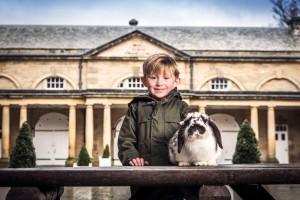Harewood-Farm-Experience-credit-Harewood-House-Trust-and-John-Steel-(3)