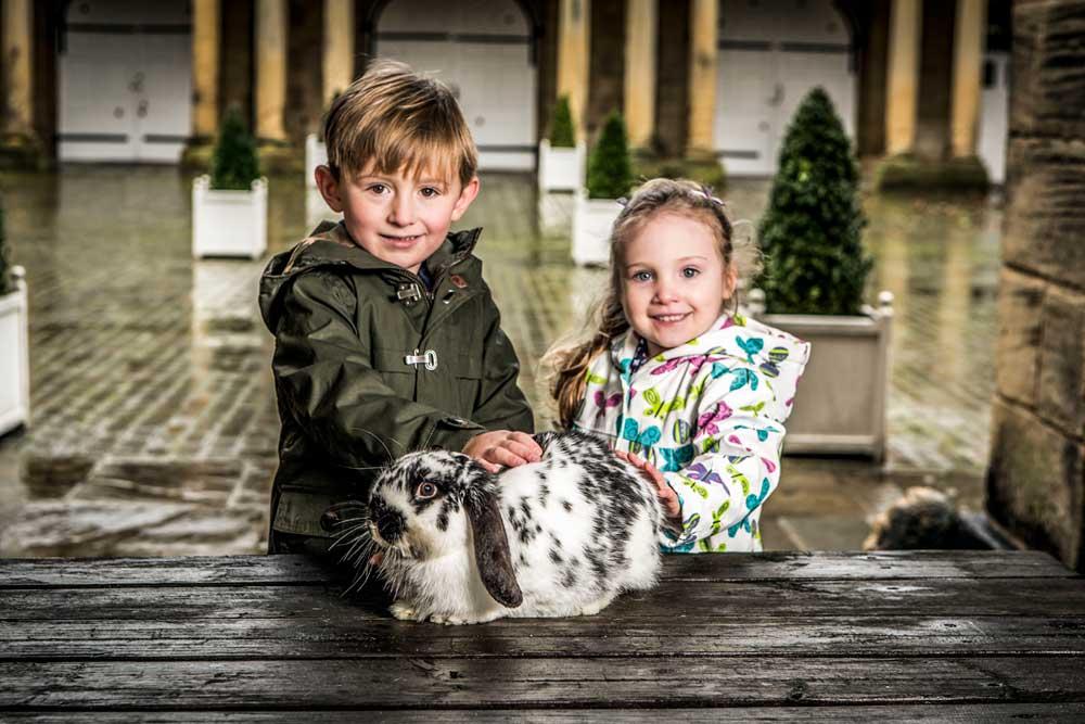 Harewood-Farm-Experience-credit-Harewood-House-Trust-and-John-Steel-(6)