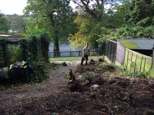 Bird Garden Redevelopment Project - tree clearing credit Harewood House Trust (7)