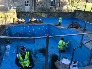Harewood House penguin pool project