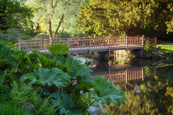 Visit Yorkshire to enjoy gardens at Harewood