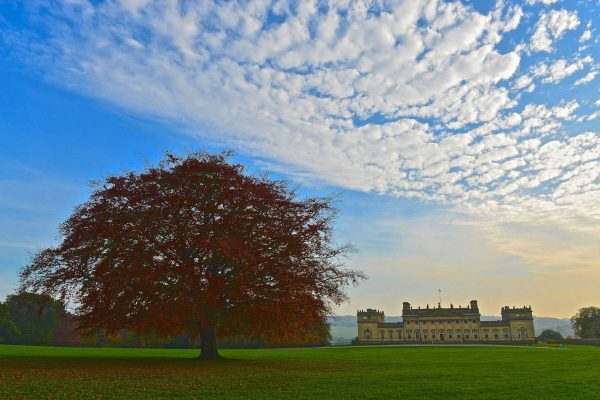 Visit Harewood House in Yorkshire to see the historic house
