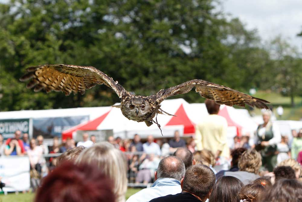 Family days out in Leeds at the Country Show at Harewood