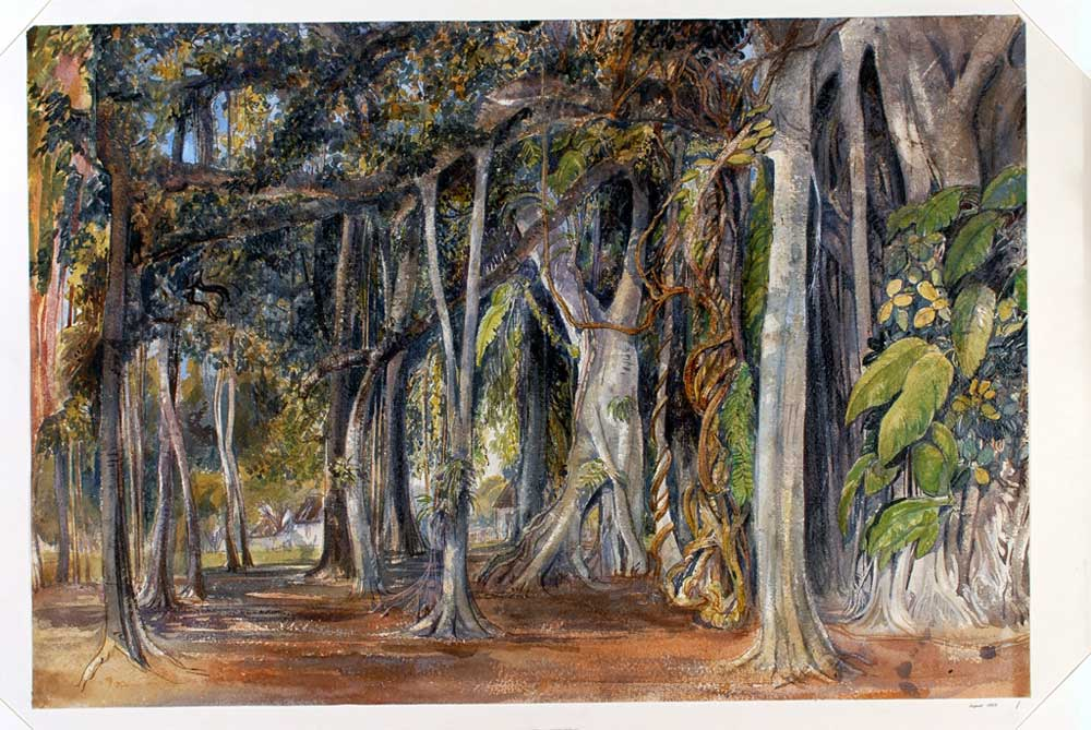 Banyan-Tree,--Barrackpore-by-Lady-Canning-credit-Harewood-House-Trust