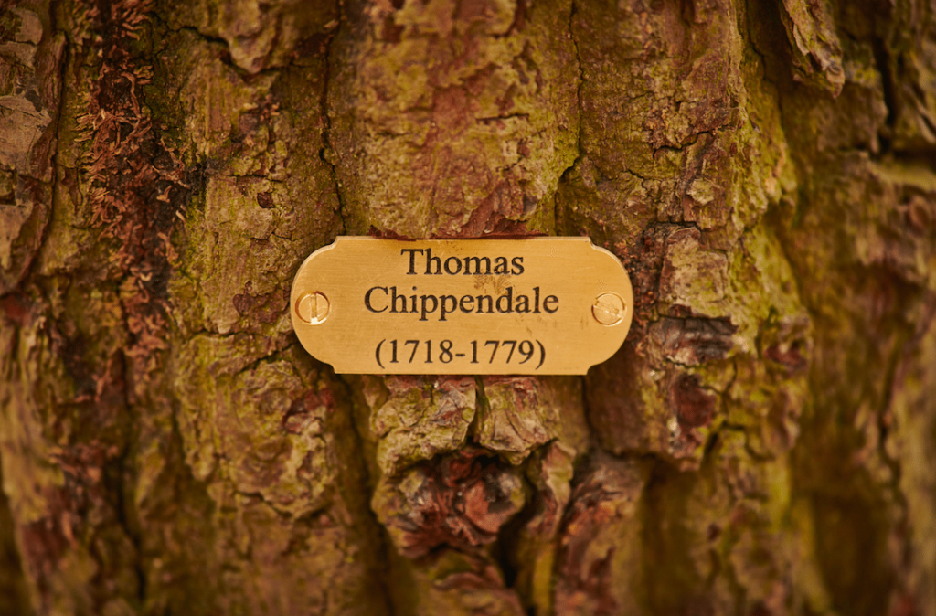 Chippendale 300 celebrations at Harewood, Leeds