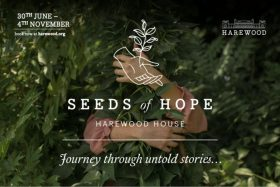 Seeds of Hope – Journey Through Untold Stories
