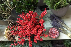 Christmas Wreath Making with Leafy Couture (9 Dec AM)