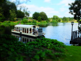Harewood House Ferry