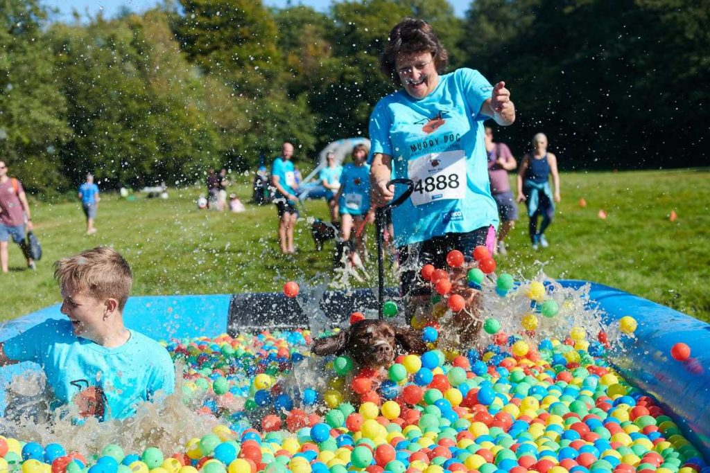 Family fun run with dogs in West Yorkshire, Harewood House