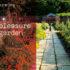 Pleasure Garden – A listening garden by Genevieve Lacey