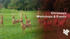 Christmas Workshops at Harewood