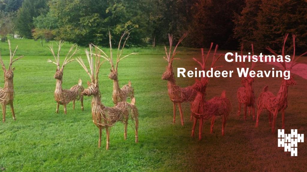 Reindeer Weave