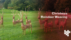 Christmas Reindeer Weaving (18 Dec)