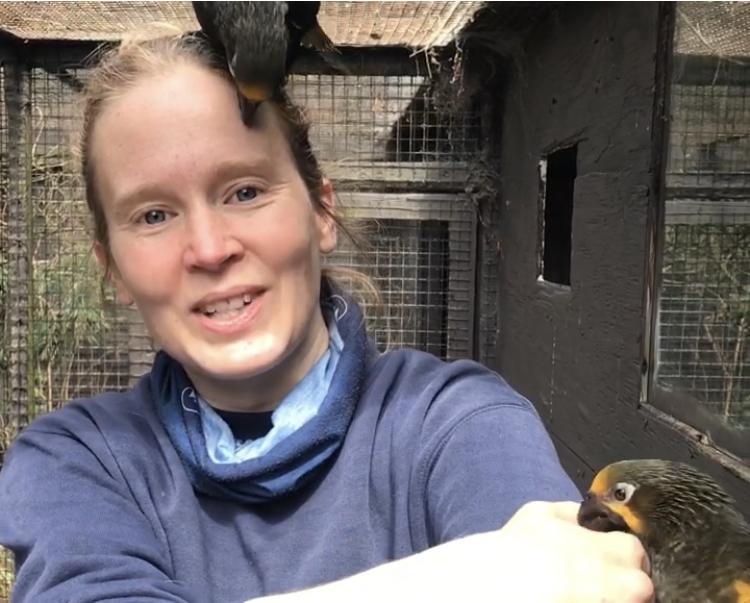 LisaBath_bird_keeper_parrot