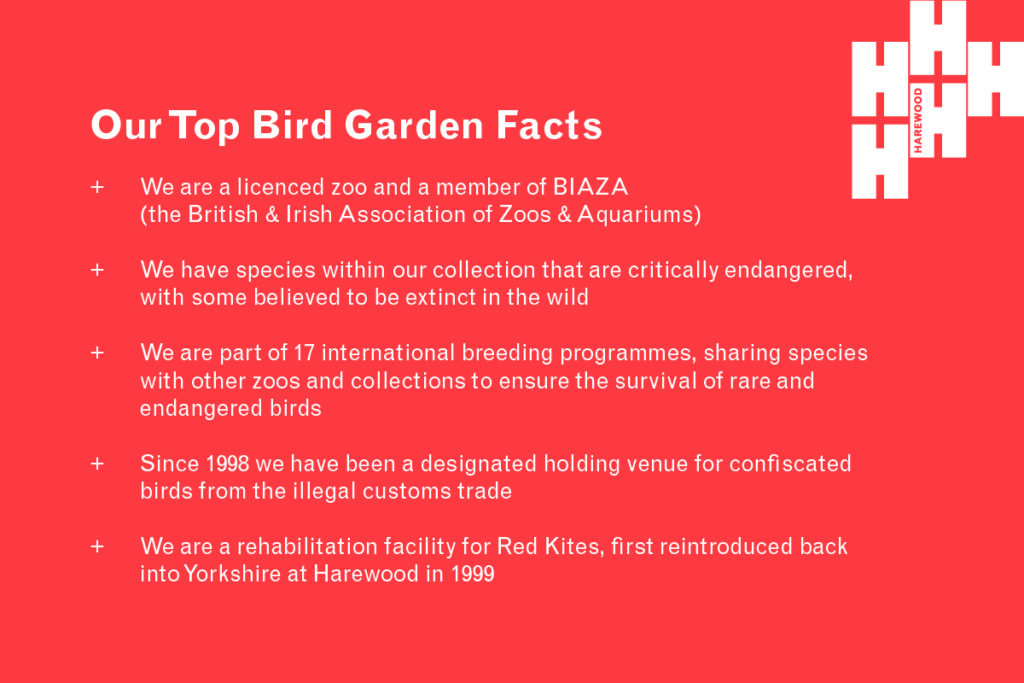 Harewood Bird Garden facts