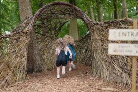 Harewood's Woodland Wonderland