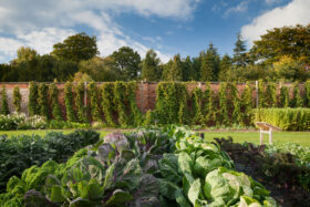 From 'Dig for Victory' to the 'No dig' Garden – The History of the Walled Garden at Harewood