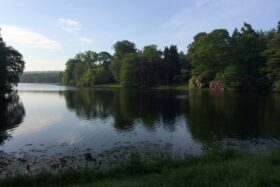 Evenings at Harewood