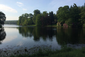 Like Water – A Morning Yoga Retreat