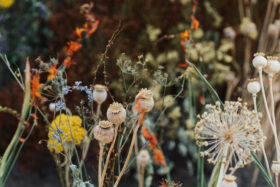 Cut and Dry: Dried flowers and everlasting wreaths